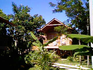 negril cabins - negril jamaica - grounds